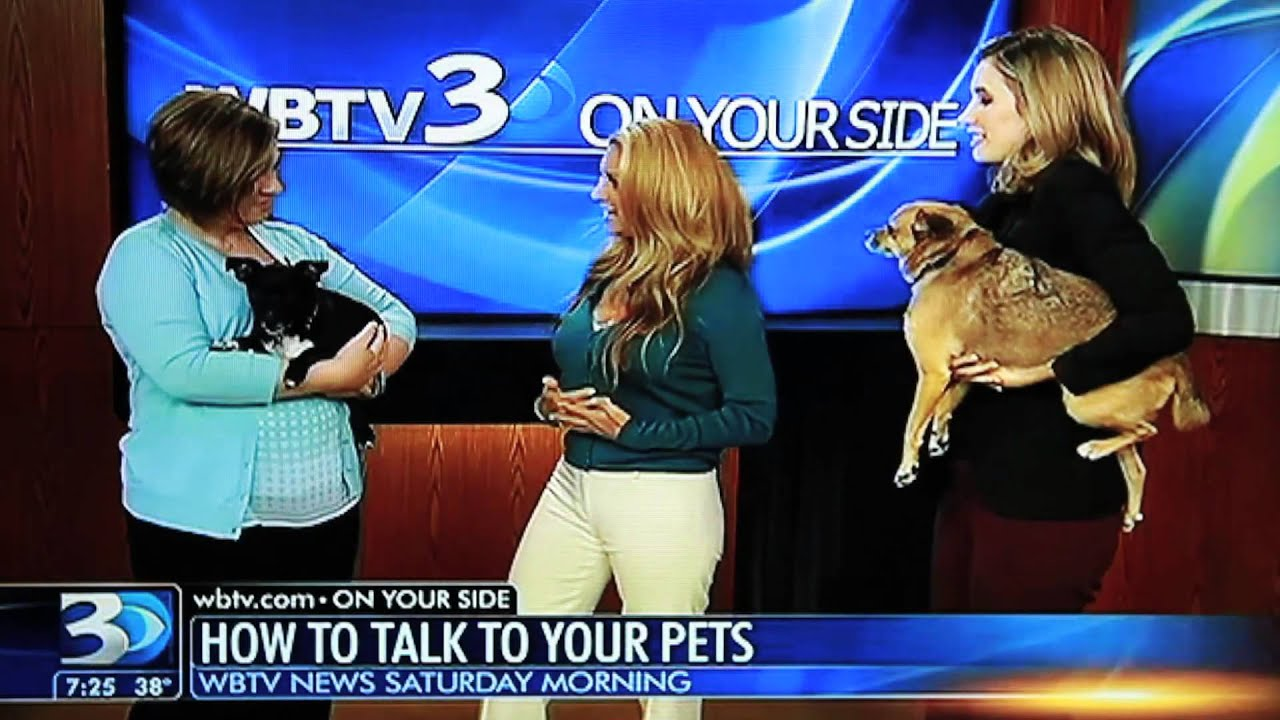 Live Animal Communication On WBTV Charlotte!!
