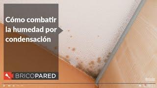 Cómo combatir la humedad por condensación - Beissier BricoPared