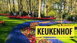 Keukenhof Garden 2019 vlog   The World's Biggest Flower Garden in Amsterdam   Keukenhof Gardens