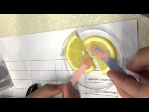 Lemon Test with Red and Blue Litmus paper
