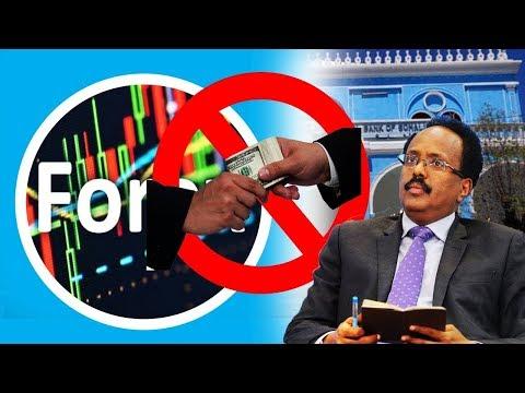 DAAWO Ninkii la baxsaday Lacagtii Forex Trading mogadishu Fashil Cusub