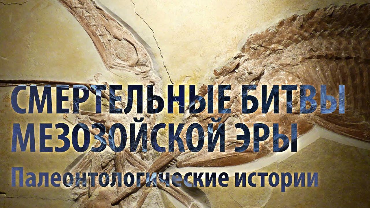 СМЕРТЕЛЬНЫЕ БИТВЫ МЕЗОЗОЙСКОЙ ЭРЫ. Ярослав Попов | Палеонтологические истории #007