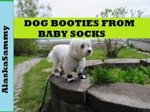 Make Dog Booties From Baby Socks- DIY Dog Clothes