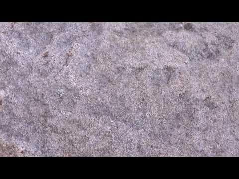 whitesnake-,-rough-an`-ready-+-lyrics