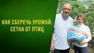 видео Купить сетка для защиты от птиц (размер 2х5 м)