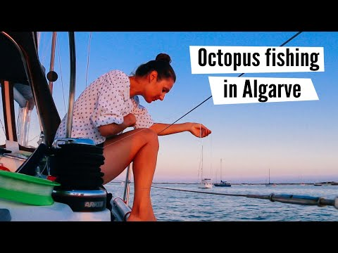 """Let's Fish An Octopus...  Octopus """"Catch & Cook"""
