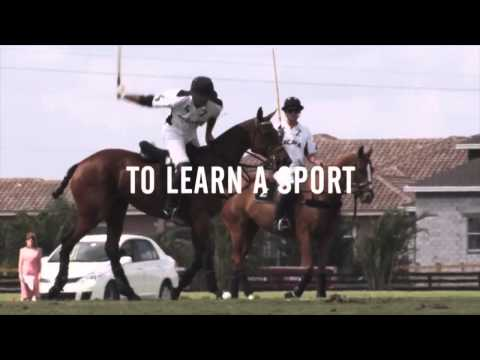 Start Playing Polo Today!