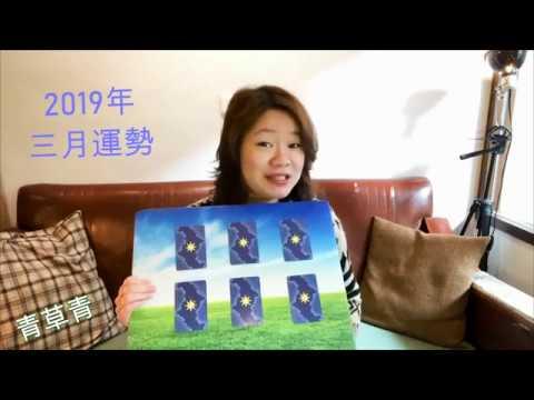 〈2019三月運勢!愛情/工作/健康〉青草青塔羅牌占卜