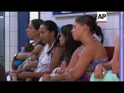 Scientists test solution for Zika virus