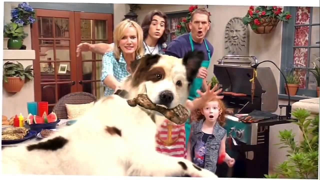 Stan , El Perro Bloguero ( Dog With A Blog ) Intro HD