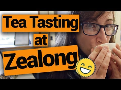 Tea Tasting at Zealong - New Zealand's Biggest Gap Year – Backpacker Guide New Zealand