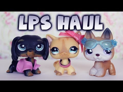 LPS Ebay Haul Dachshund 325 & 112 with accessories | Alice LPS