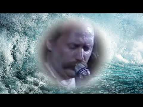 Владимир Мулявин-Крик птицы