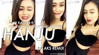 Tony Kakkar ft Neha Kakkar, Meiyang Chang - Hanju (DJ AKS Remix)