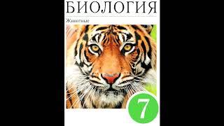 § 19 Отряд насекомых: перепончатокрылые