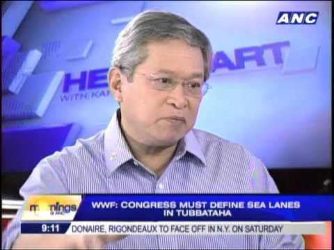 WWF-PH urges Congress to establish sea lanes