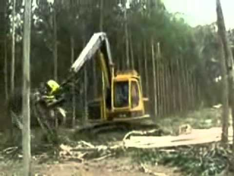 Macchina Taglia-alberi(sembrano Mani Vere)
