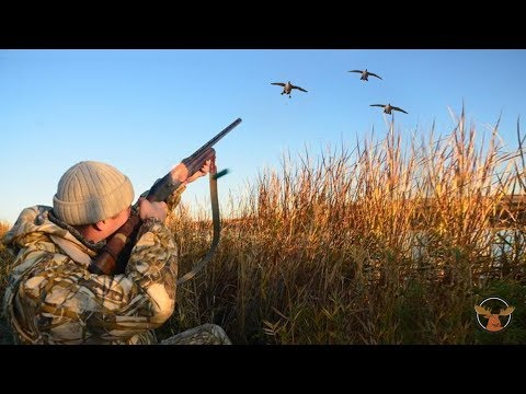 Duck hunting - Selection videos of real hunt. Best shots