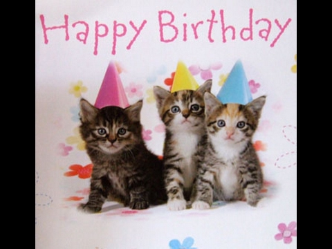 Cat Saying Happy Birthday To You