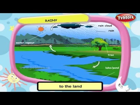 Science For Class 3 : Weather and Seasons   Science Videos For Kids   Science Projects