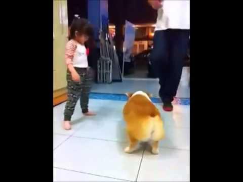Shake that booty