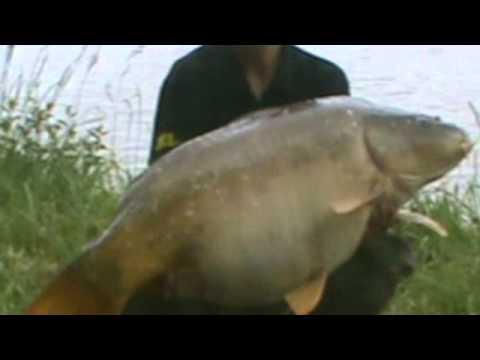 Les articles avec les images sur la pêche