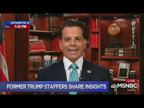 Scaramucci and Omarosa Make Joint MSNBC Appearance To Bash Trump