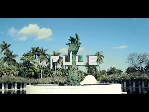 8. PULE - Dollars and Sense ft. BuckieBlitz