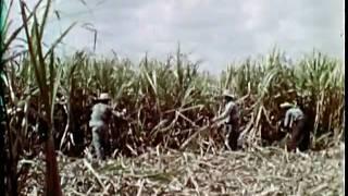 CUBA BEFORE FIDEL CASTRO'S COMMUNIST REVOLUTION 9/12