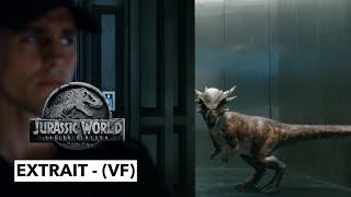 Jurassic World : Fallen Kingdom - extrait : Stiggy interrompt les enchères ! - (VF)