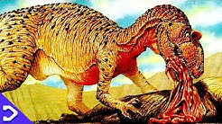 NEW T. REX Sized Dinosaur DISCOVERED! - DINOSAUR NEWS