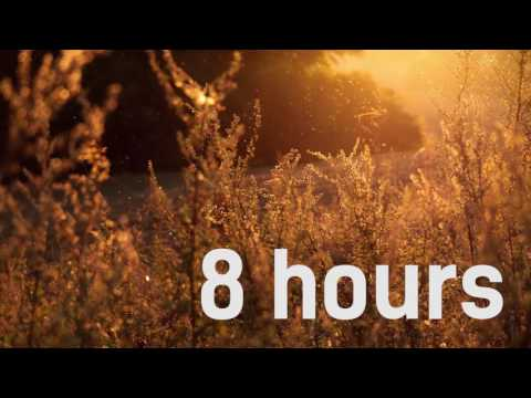 8 Hours of Wind, Crickets, Grasshoppers, Peepers - Natural Meditation, Relax, Yoga Music