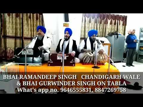 Raj Leela Tere Naam Banai | Bhai Ramandeep Singh Chandigarh wale | Bhai Gurwinder singh on tabla