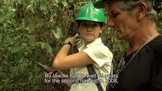 FUNDECOR: Gente y Bosques ANA LIGIA