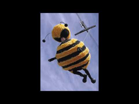 jerry seinfeld in a bee costume dancing to september & jerry seinfeld in a bee costume dancing to september - YouTube