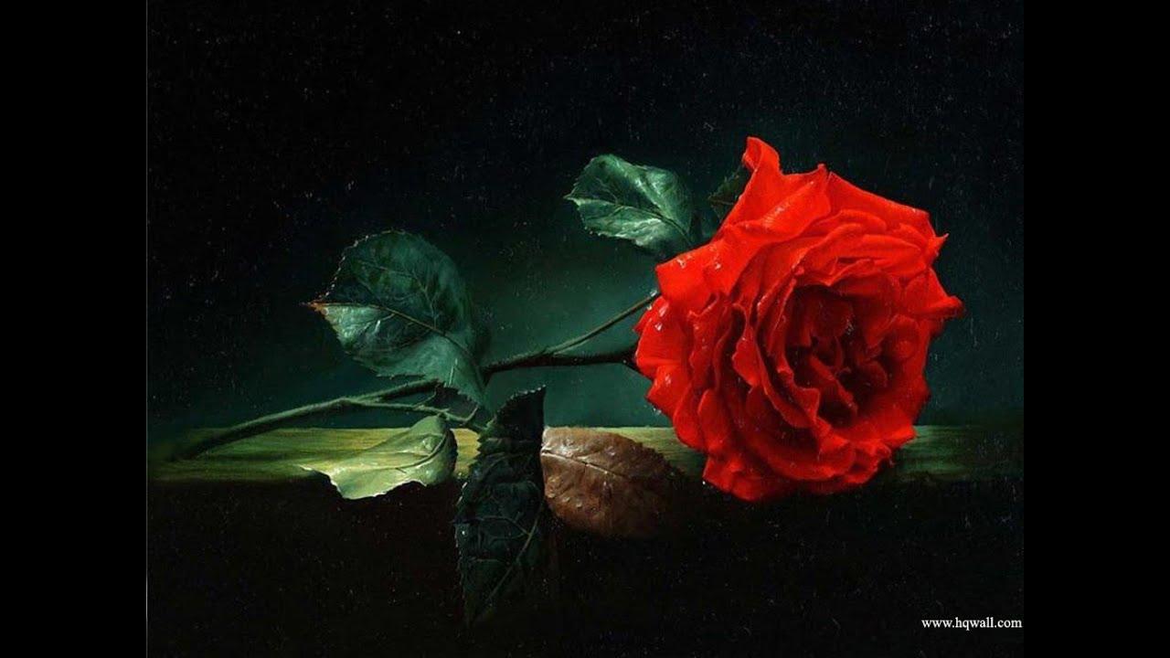 ♥Em Meus Pensamentos♥ O Amor, levante-nos para o alto onde nós pertencemos♥Up Where We Belong♥