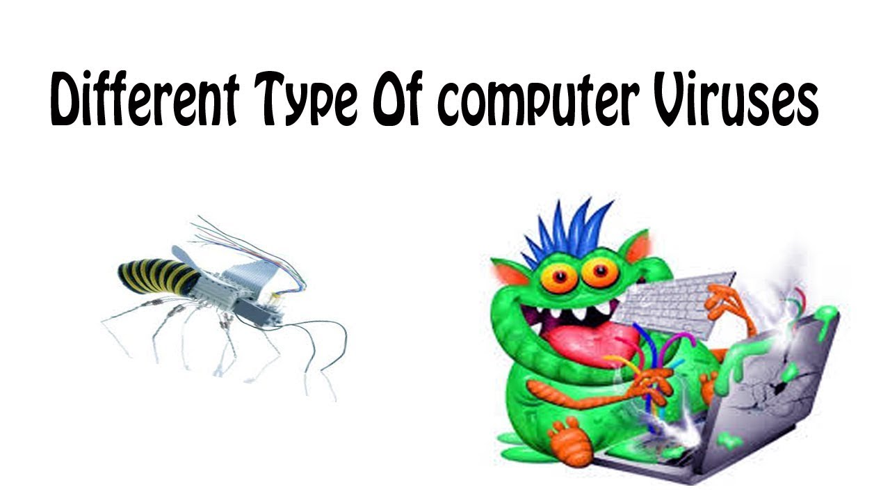about different types of computer viruses