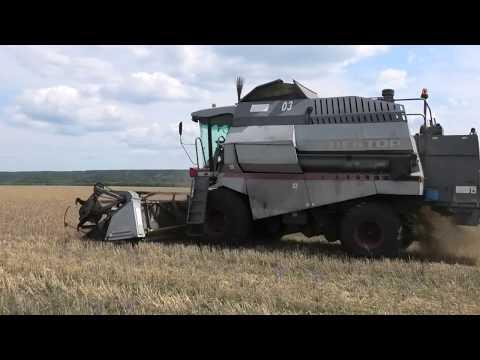 На полях сельхоз-предприятий Николаевского района началась уборочная компания
