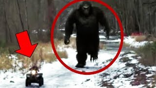 10 Mysterious Creatures In the Forest & Woods Caught On Camera