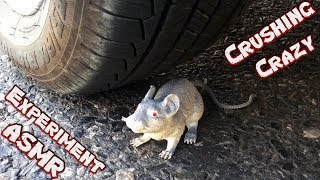 Crazy Experiment Car vs Mouse | Crushing Crunchy & Soft Things by Car - Satisfying Asmr Video