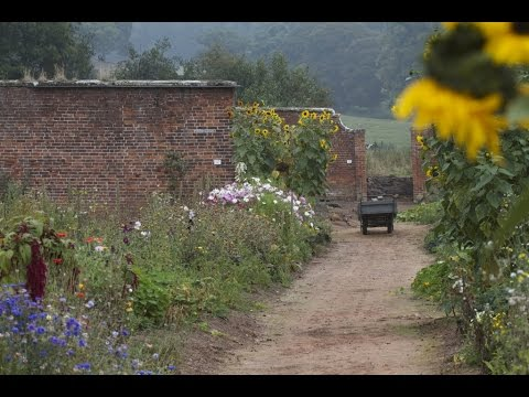 Apley Walled Garden on BBC Inside Out, the History of the walled garden (2012-11-05)