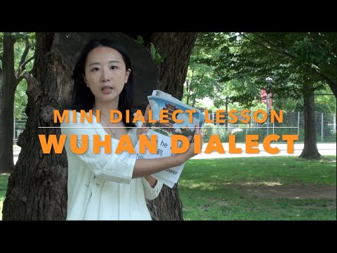 mini wuhan dialect lesson