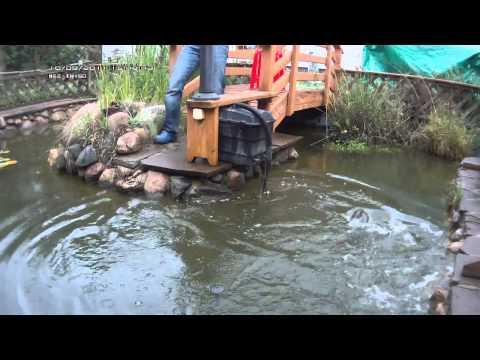 рыбалка на мелких прудах видео