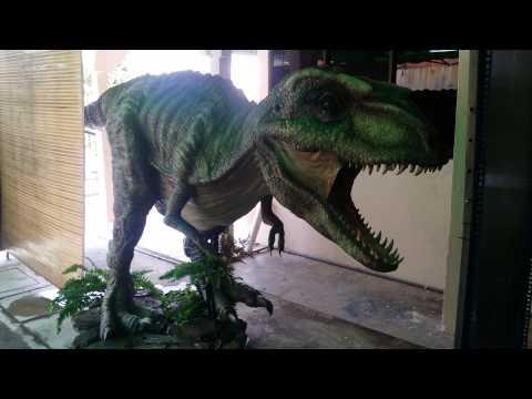 14 Feet Gorgosaurus  #GSC walking with Dinosaur Display
