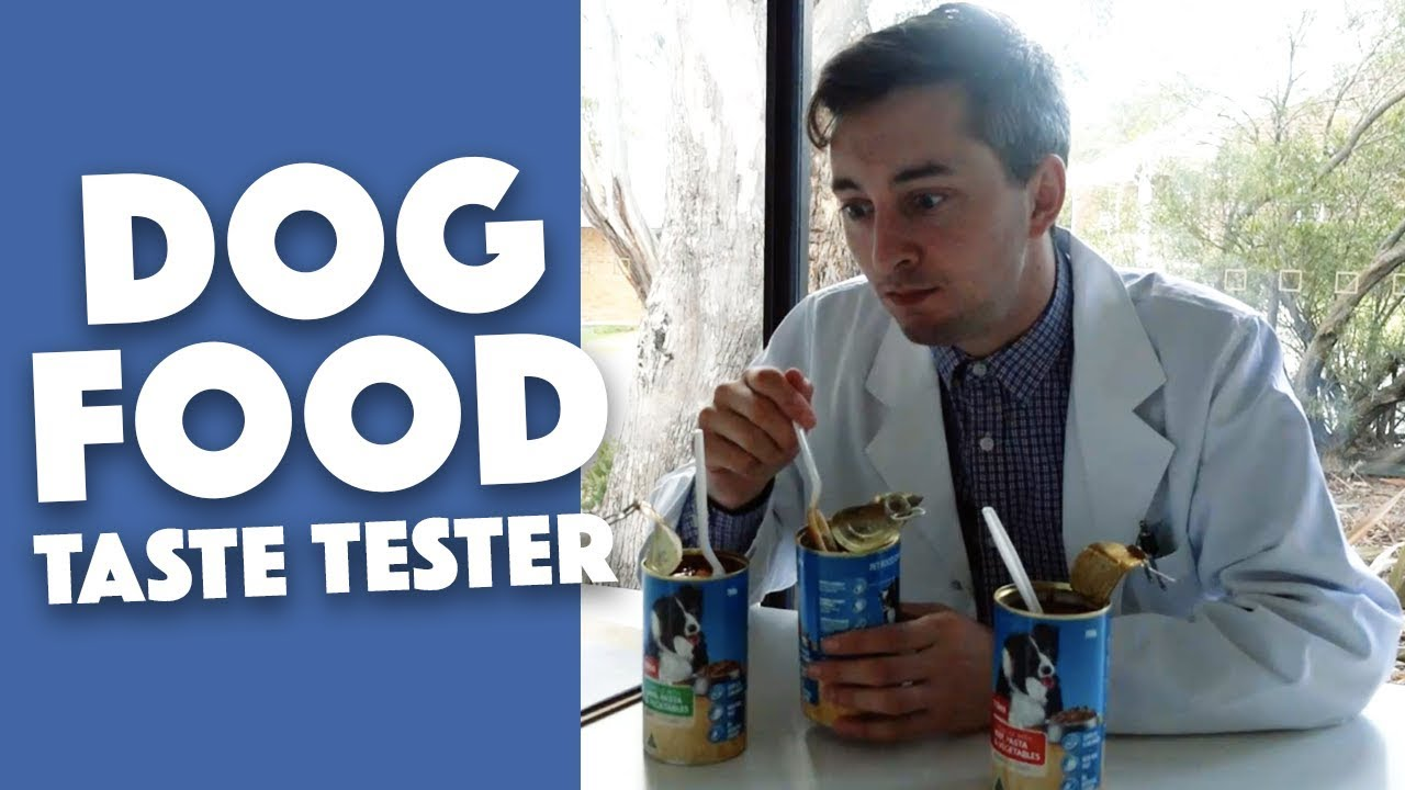Tester gum and food for dogs, as well as other original jobs in the food industry