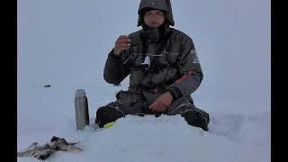 ЛОВЛЮ КАРАСИКОВ НА ДЕРЕВЕНСКОМ ПРУДУ Рыбалка на удочку карась Сибирь