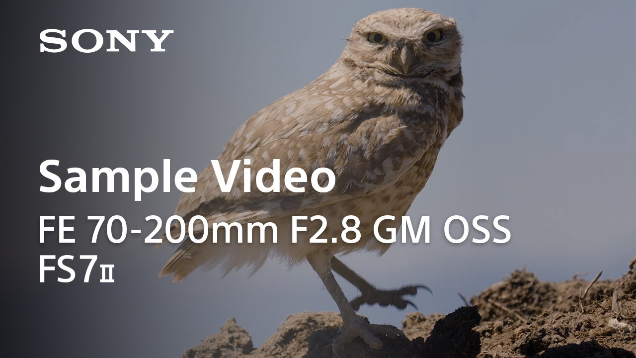 Hands-On l FE 70-200mm F2.8 GM OSS with FS7 II l Sony