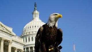House passes two immigration bills amid Trump tweet focus