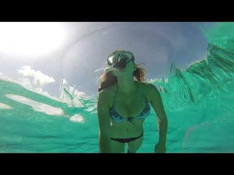 Snorkeling Alligator Reef Lighthouse| Islamorada Florida Keys (Dolphins, Snorkeling, Etc)