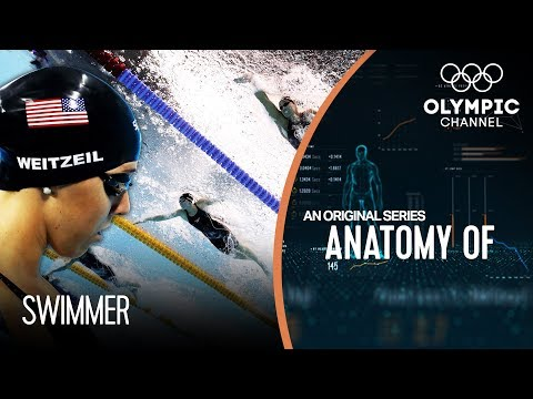 Anatomy of a Swimmer - How does Olympic champion Abbey Weitz